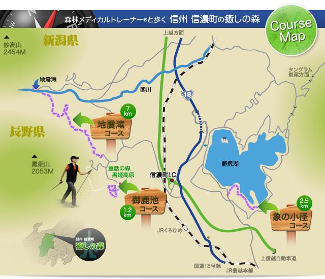 信濃町の癒しの森.jpg